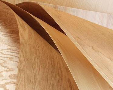 THE PROCESS OF SLICING VENEER