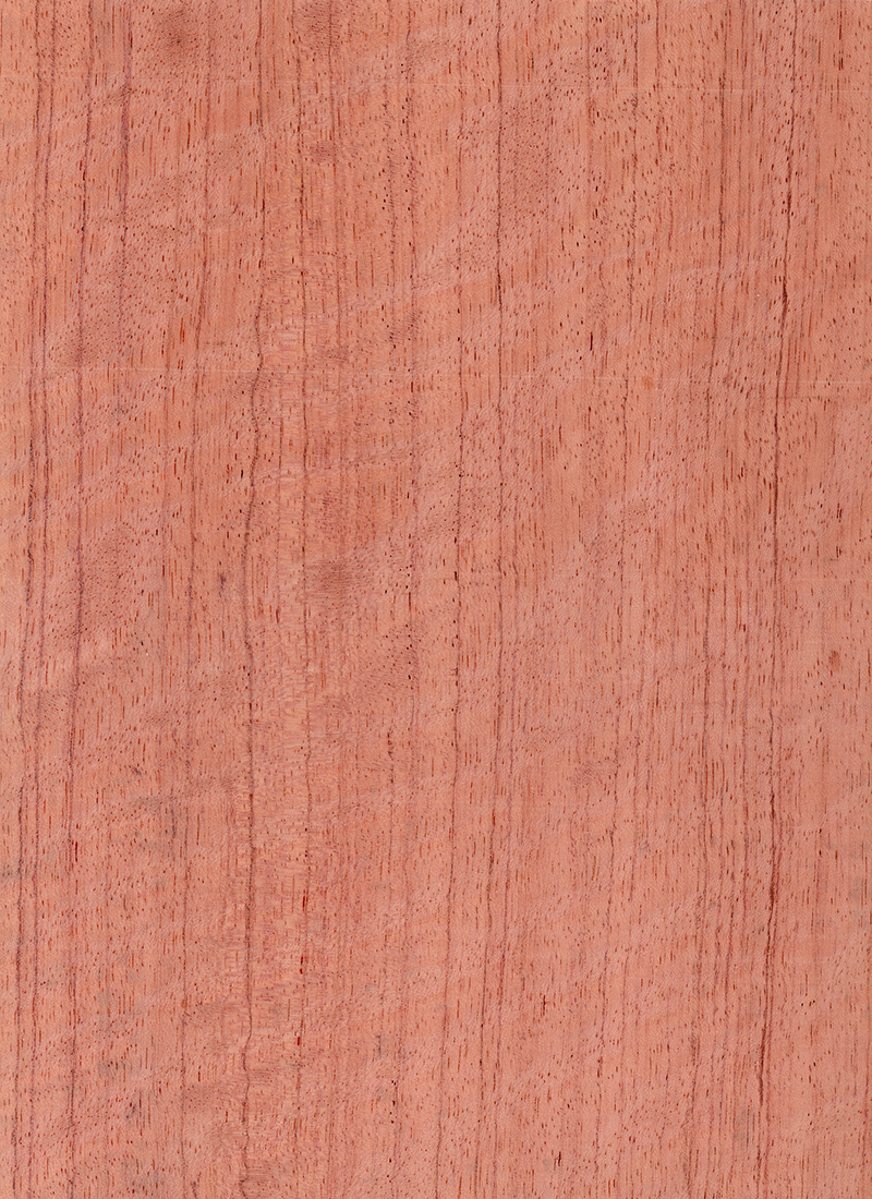 BUBINGA QTR FIGURED