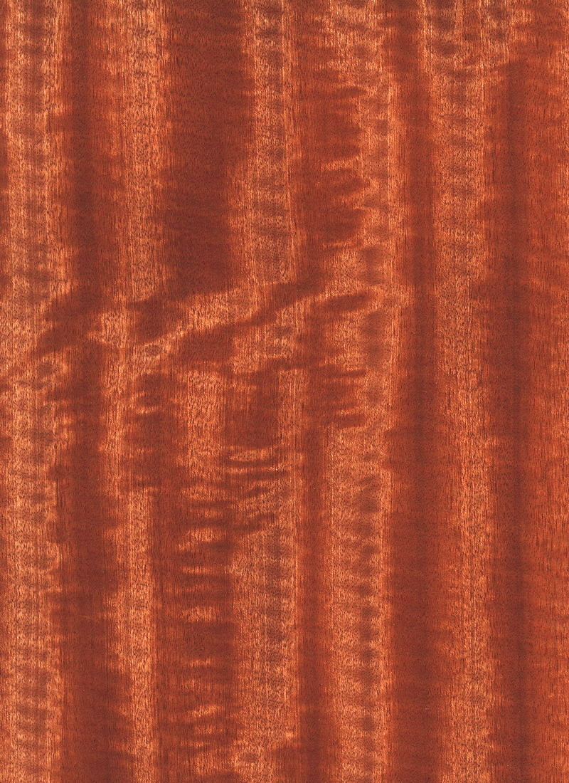 SAPELE REALTEC QTR FIGURED