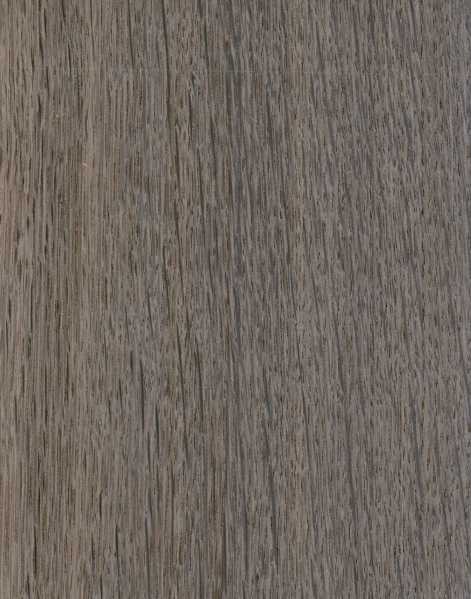 OAK CHROME (DARK)