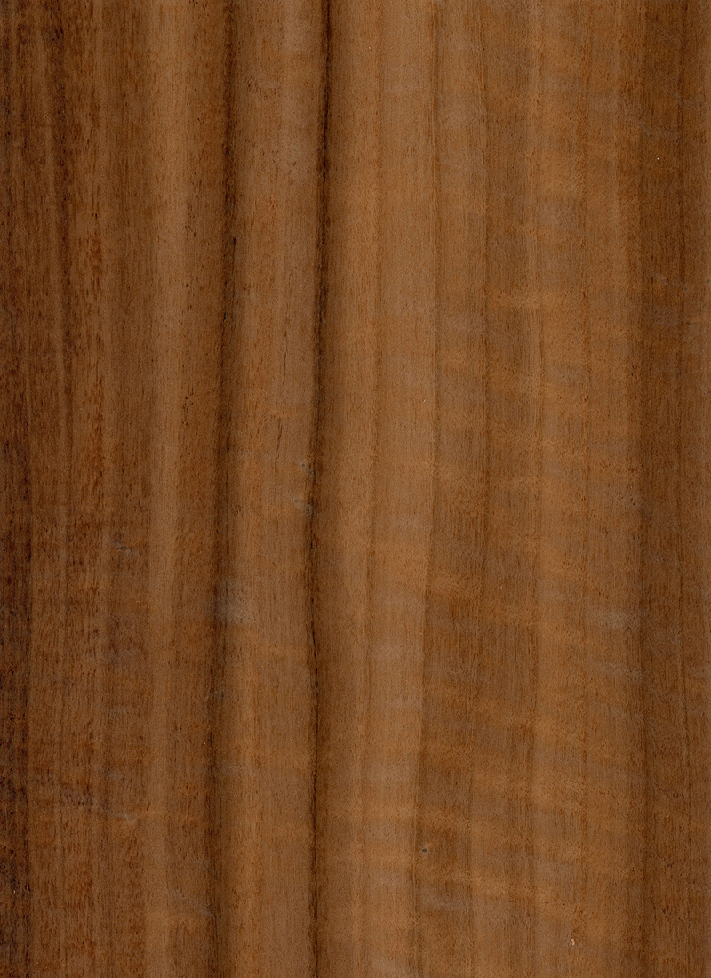 FUMED WILLOW